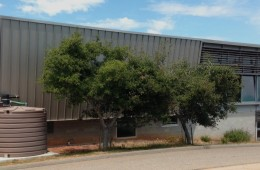 UCSC Wellness Center Rainwater Harvesting Design
