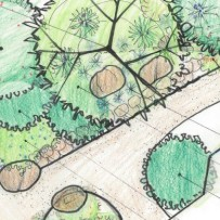 Extending Moore Creek Preserve into a Westside Front Yard