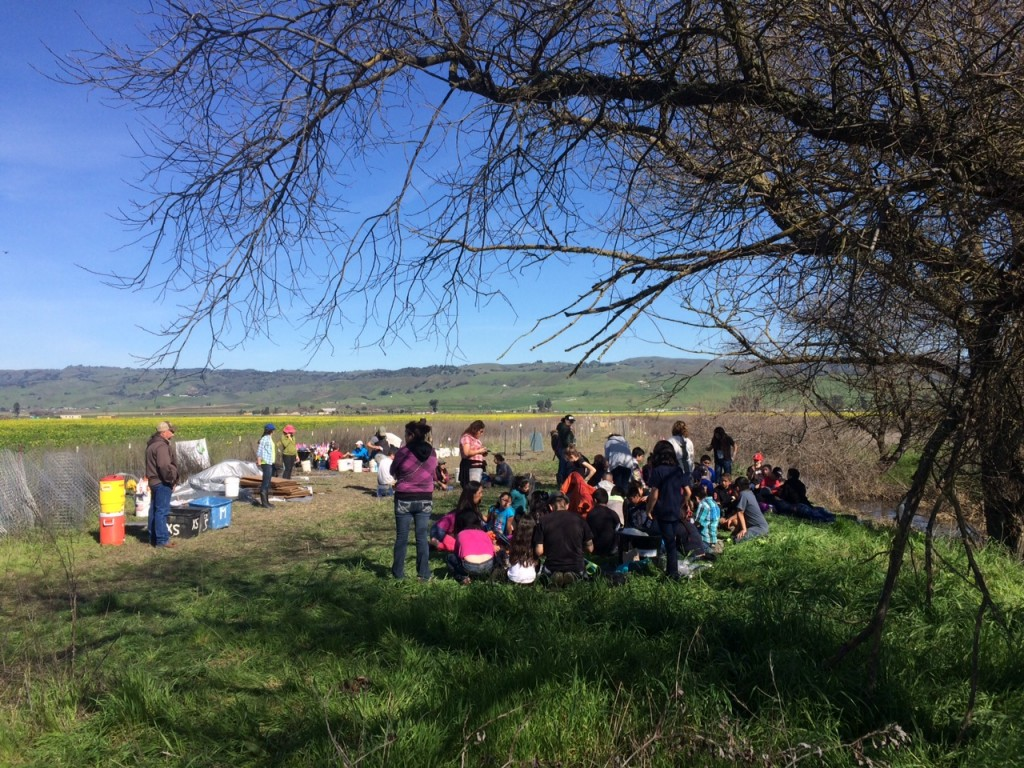 students and teachers restoring a watersheds